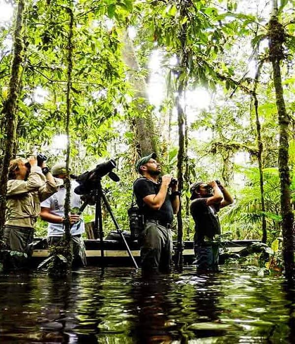 Cuyabeno Amazon Jungle Tours 4 days Ecuador
